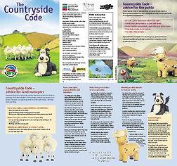 code_leaflet_Page_2.jpg