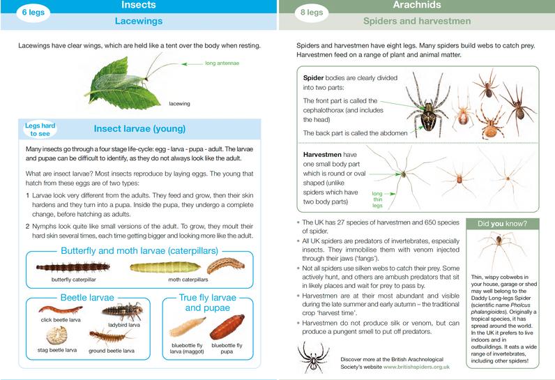 Invertebrate ID Guide 5