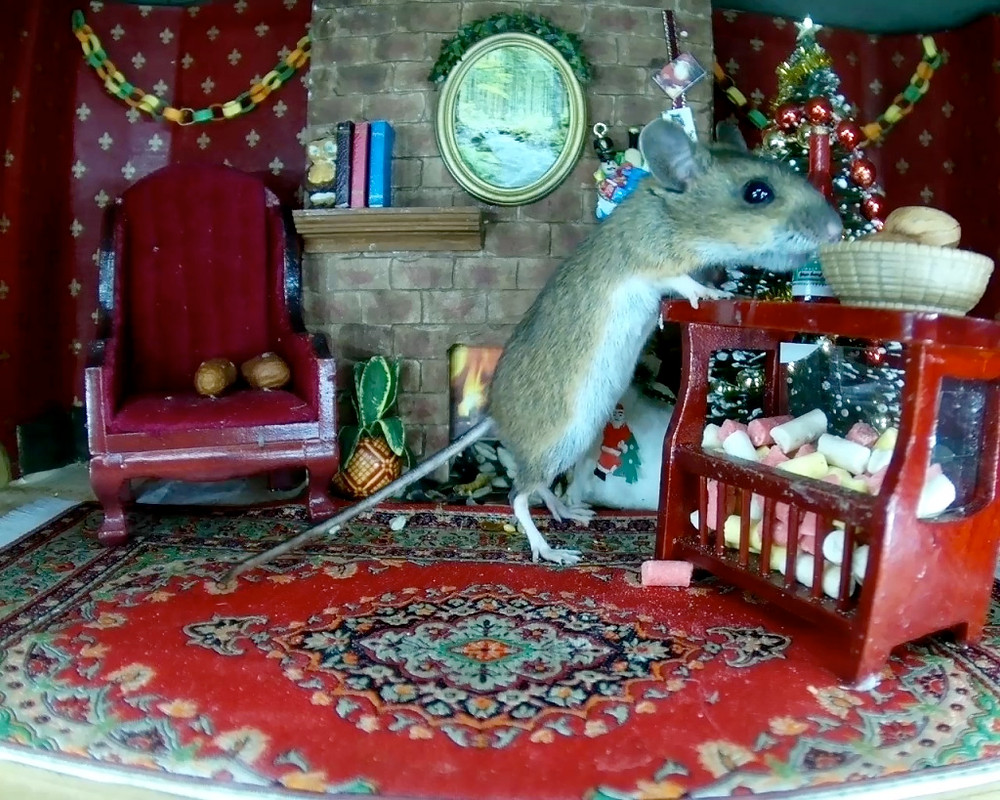 xmas-mousetakes-nut_00001