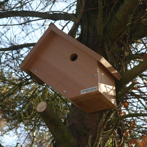 'Odd box' mystery visitor