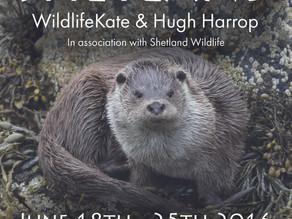 'Ultimate Shetland' with WildlifeKate & Hugh Harrop!