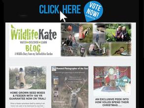 Vote for me in the UK Blog Awards!