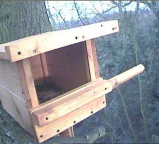 Kestrel Box all wired into office!