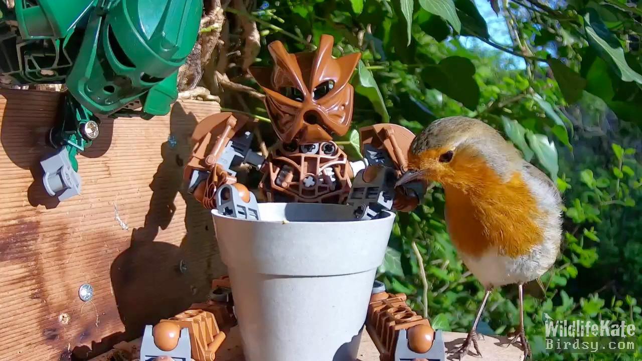 Robin meets bionicle_Merge_00003.jpg