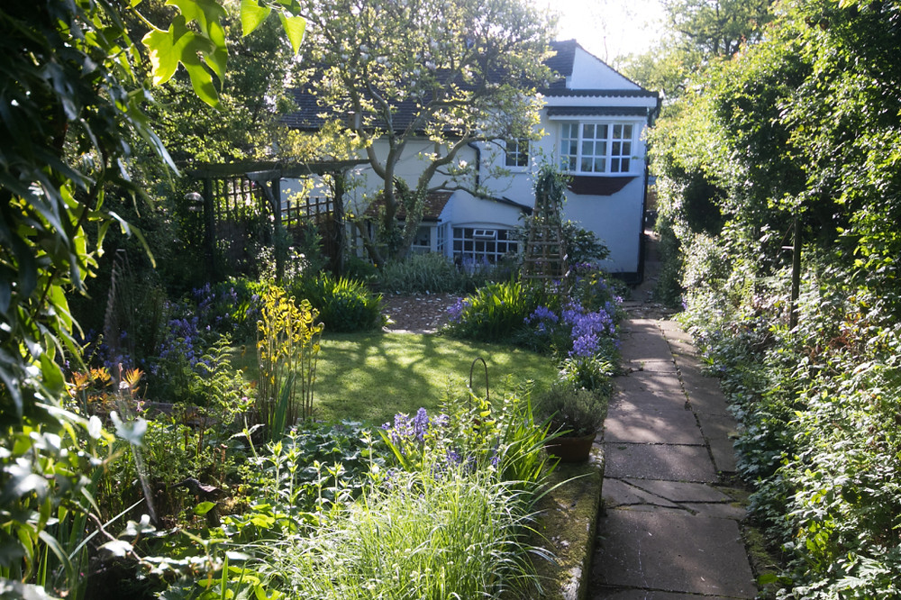 Garden May 2016 _-4993_lowRes20