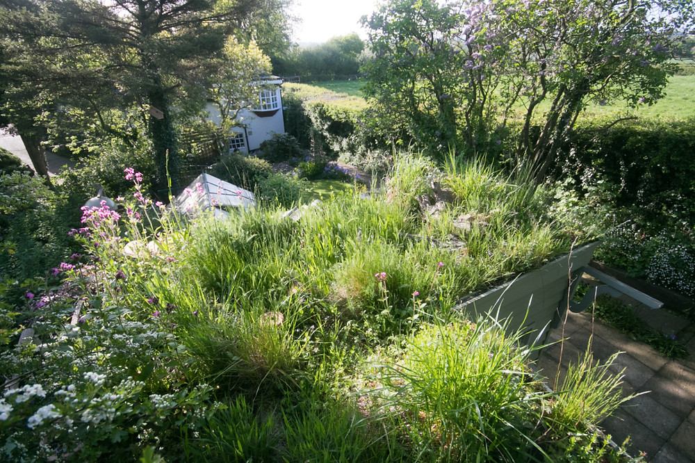 Garden May 2016 _-5008_lowRes27