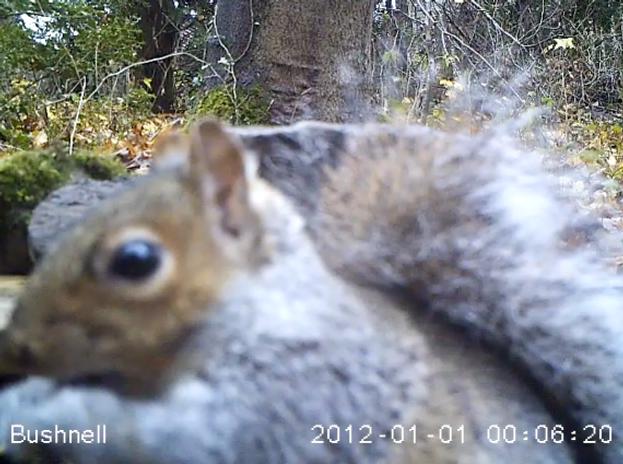 Screen shot 2012-12-12 at 20.25.33
