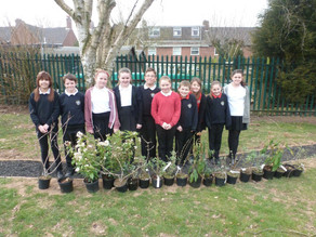 A busy week of school planting, nocturnal animals, ponds, nest boxes and garden survey!