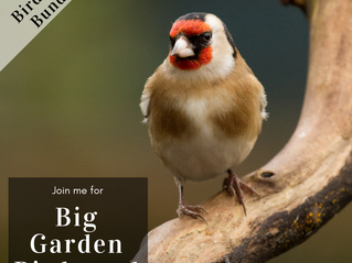 Are you ready for the Big Garden Birdwatch this weekend?