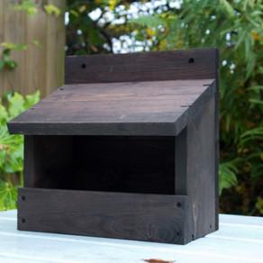 Blackbird nest box set up