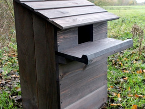 Barn owl nestbox now in place!