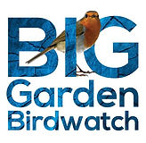 RSPB-big-garden-birdwatch.jpg
