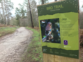 Working with Cannock Chase AONB and West Midland Bird Club