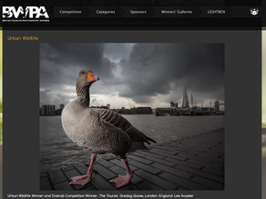 The BWPA Awards Evening