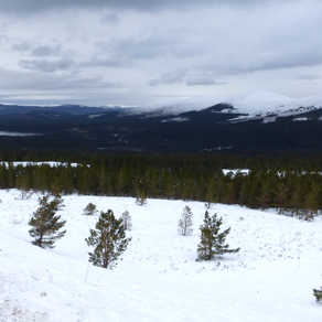 Cairngorms 2014: Day 4
