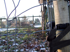 Bushnell set up in neighbour's field