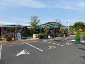 William Wheats Garden Centre….. and haven for wildlife!