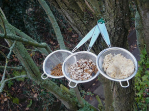 Take 3 small sieves……