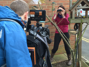 Big School Birdwatch with BBC Midlands Today!