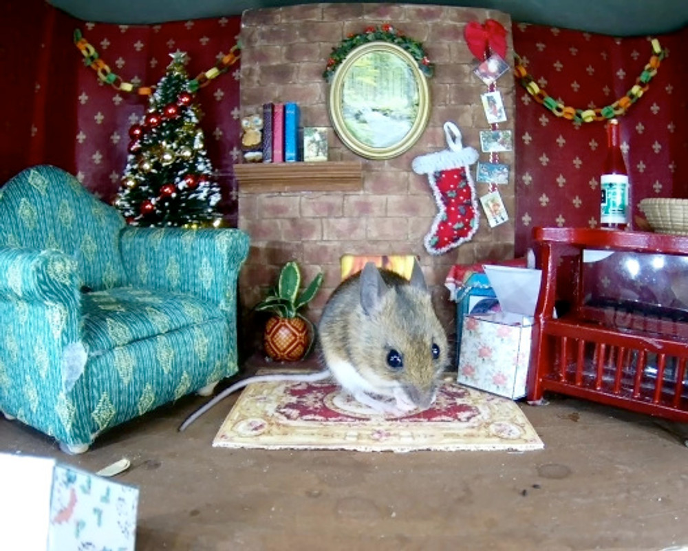 Christmas mouse1_00003