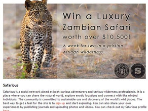 I entered a competition to win a luxury Zambian Safari