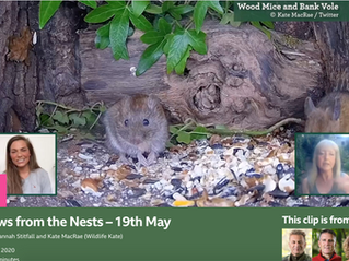 Springwatch, Podcasts and Magazines.....
