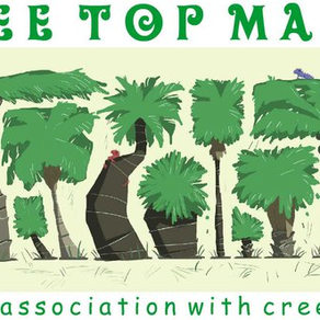 WildlifeKate becomes a supporting partner for the 'Tree Top' project in Manu, Peru