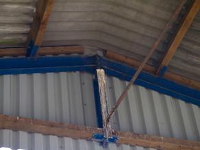 Bird of Prey Pellets in local barn!