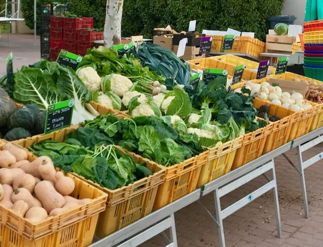 Lutin jardin - Légumes Bio