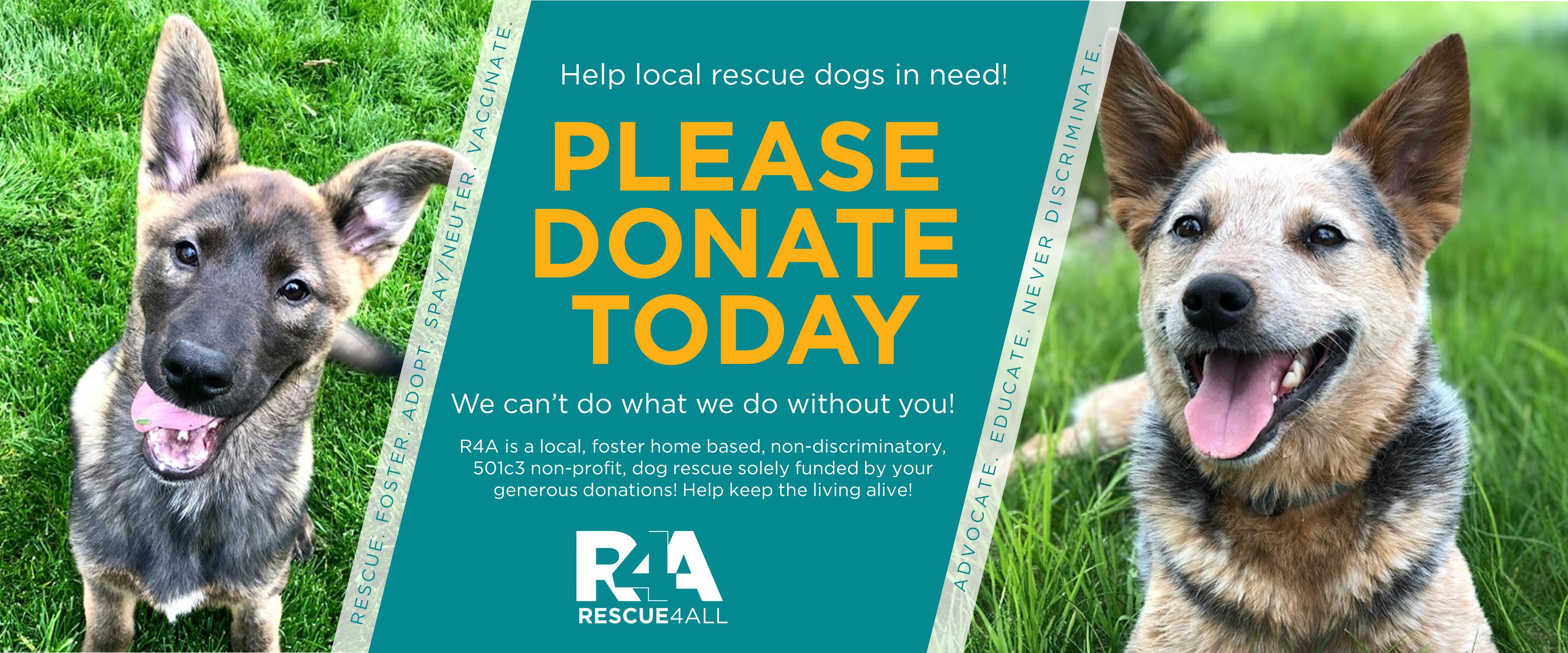 Rescue4All