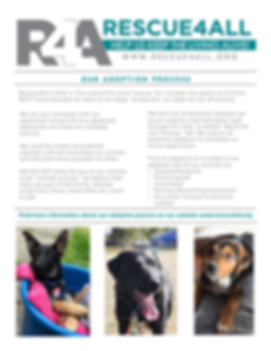 Rescue4All media kit Spokane dog rescue jamie mcatee R4A 501c3 nonprofit