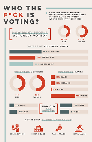 J 460_Political Infographic_SurMaile.png