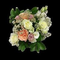 briar rose flowers warkworth weddings mothers day birthdays sympathy gifts florist deliver