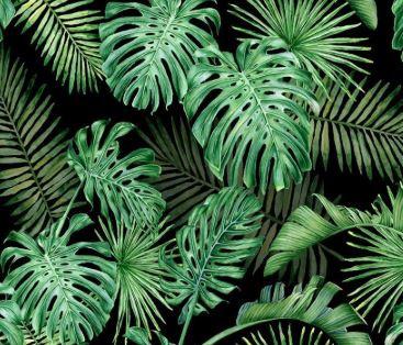Jungle (enfants)
