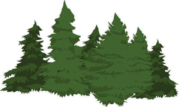 trees_edited.png