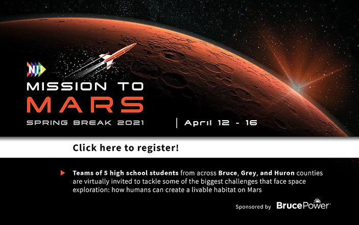 NII Mission to Mars Website graphic.jpg