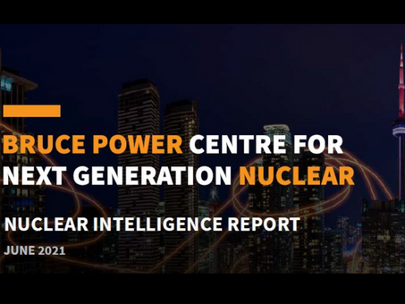 Exploring SMR readiness in Africa: June Nuclear Intelligence Report