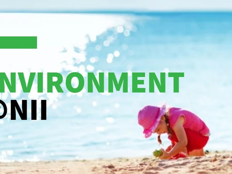 NII announces the creation of Environment@NII program to host environmental and health research
