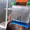 water cycle 4.png