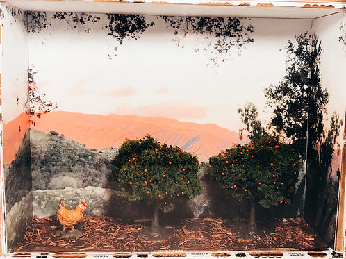 Pink Moment with Orange Trees