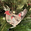 Thumbnail: Fanciful Chicken Magnet/Ornament