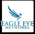 eagle eye-01.png