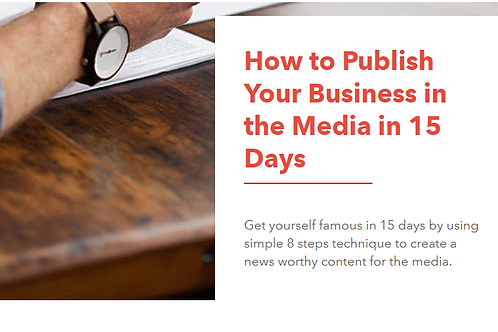 Ebook (How To Publish Your Business in the Media in 15 Days)