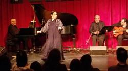 Mariano y Casa Flamenca - Copy