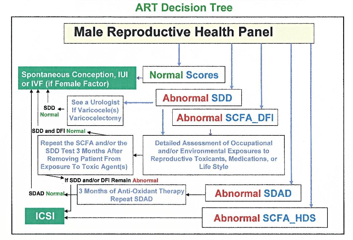 male reproductive health panel