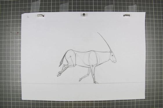 Course d'un Oryx
