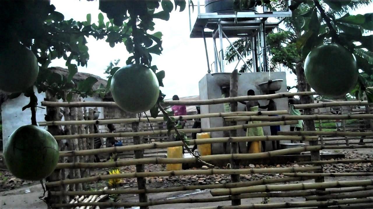 Bamboo Fences around the pump (1).jpg