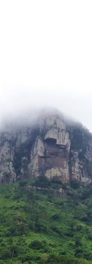tiger mountain 2.jpg
