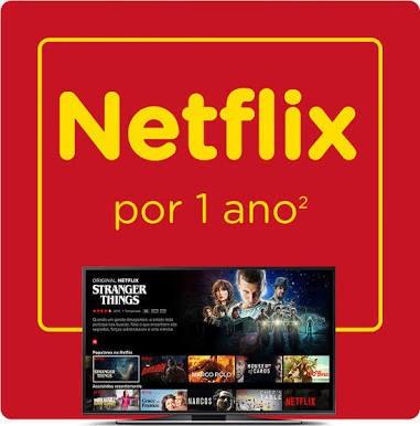 Netflix Premium HD 1 Ano