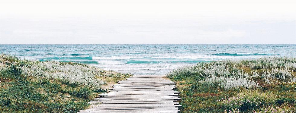 Beach Path3.jpg